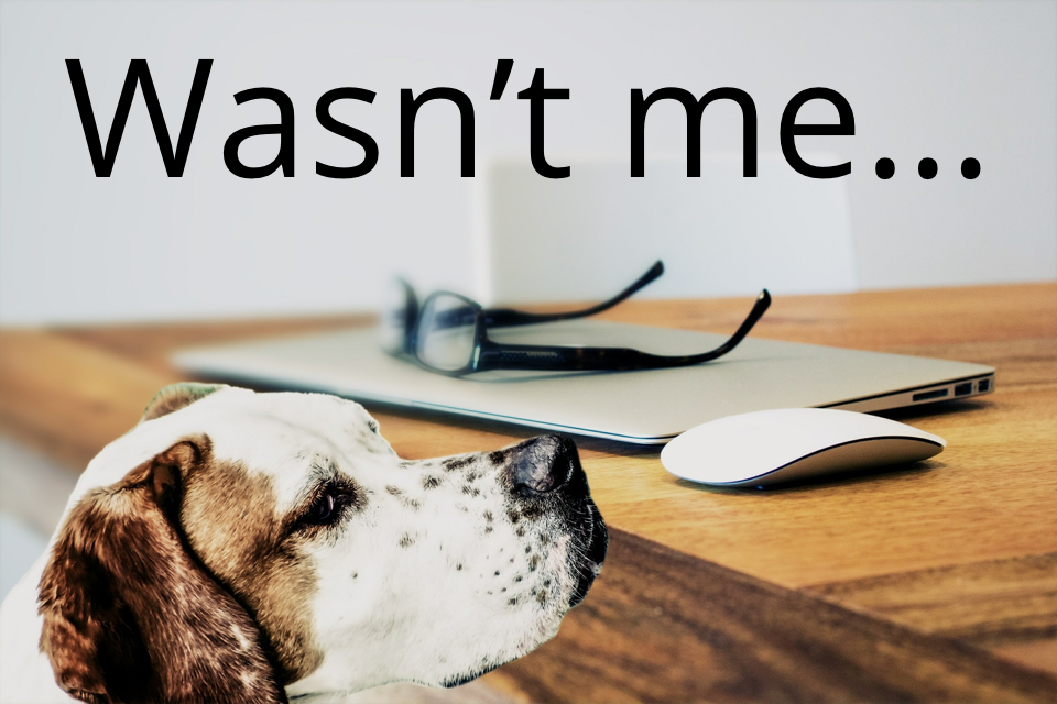 No more excuses: It's not the dog, it's that you don't text with customers using Message Mate
